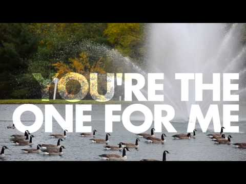 Great Good Fine Ok - You're The One For Me (Lyric Video)
