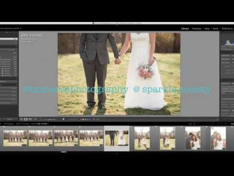 Apply Your Logo as a Watermark in Lightroom