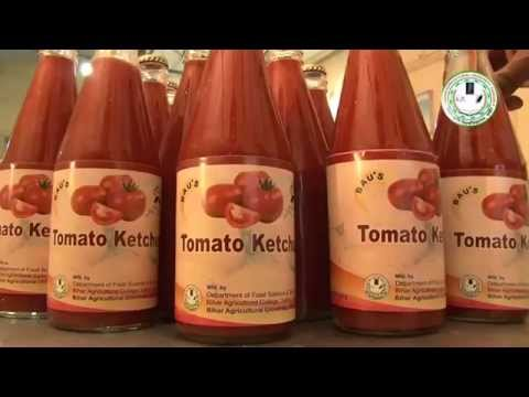 Scientific Method  for making Tomato Ketchup