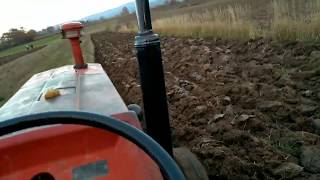 Download IMT 560(s44) oranje Video