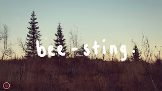 Download The Wombats - Bee-Sting (Lyrics) Video