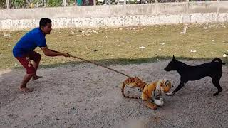 Wow!!! Fake Tiger Prank Dog So Funny Prank Pls Try To Stop Laugh Challenge