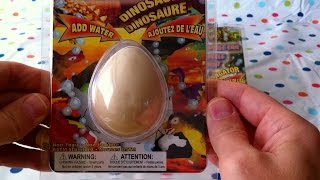Watch 3 Dinosaur Egg Toys Break And Hatch Into 3 Baby Dinosaur Toys For Girls And Boys