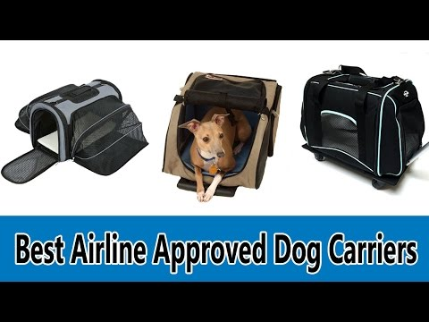 5 Best Airline Approved Dog Carriers Review 2017