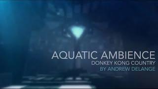 DKC: Aquatic Ambience | Reimagined 2015 Orchestal Version (Andrew De Lange)