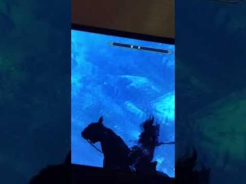 Flying horse skyrim