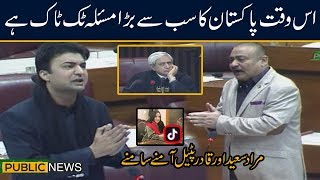Murad Saaed vs Qadir Patel   Heated debate on Tik Tok   National Assembly