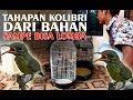 Tahapan Burung Kolibri Ninja Dari Bahan Ijoan Sampe Metalik Siap Lomba