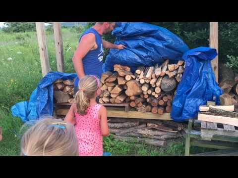 Removing more SNAKES from the fire wood pile