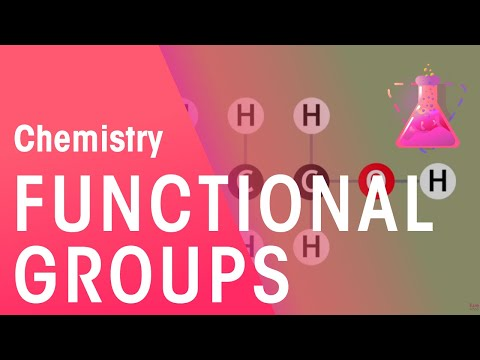 The functional group concept explained | The Chemistry Journey | The Fuse School