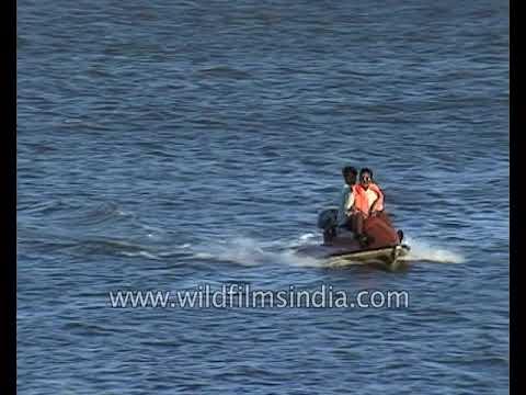 Jet ski ride,an adventure sport in Goa