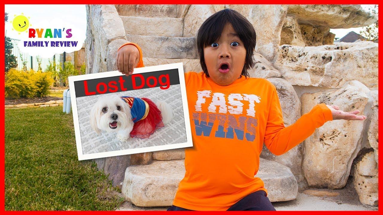 Download Our Dog Ran away on Thanksgiving Day!!!! MP3 Gratis