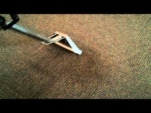 Carpet Cleaning Indianapolis SPOT REMOVAL