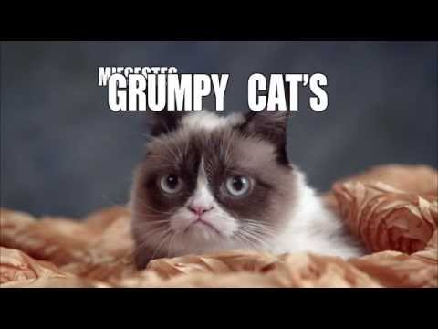 Grumpy Cat miesestes Weihnachtsfest ever - PromoClip -