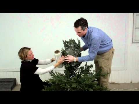 How to store your Christmas tree