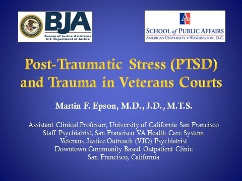 Post Traumatic Stress and Trauma in Veterans Treatment Courts