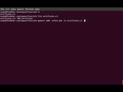 Convert a PEM encoded certificate to a DER encoded certificate with OpenSSL