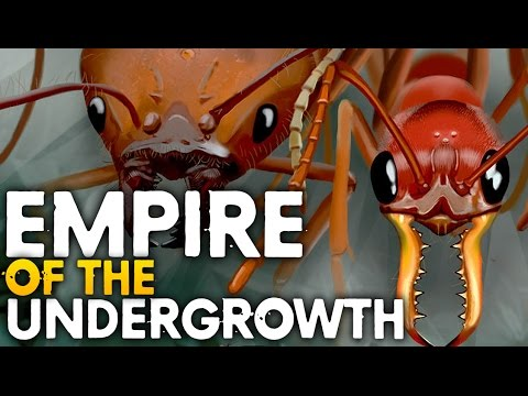 RUNNING AN ANT COLONY | Empires Of The Undergrowth (BETA)