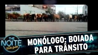 Monólogo: Boiada para trânsito em Sorocaba   The Noite (18/07/17)