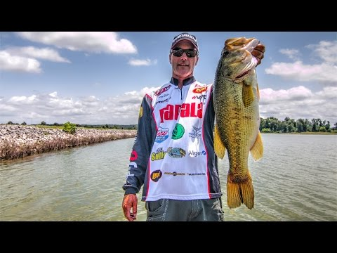 Frog Fishing Tips for Largemouth Bass