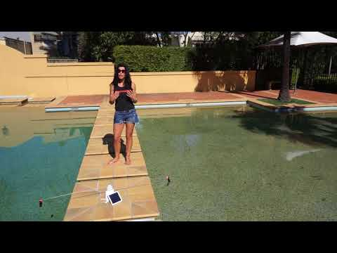 Solar Bird Repeller -Keep ducks and birds away from your pool.