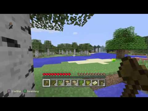 Come join me! (Minecraft) (PS4)