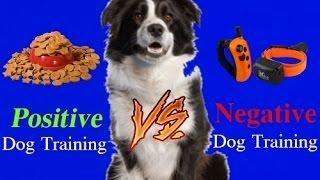 WARNING! Extremely Controversial!  Positive Dog Training vs Negative Dog Training!