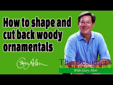 How to Shape Woody Ornamentals In the Yard with Gary Alan