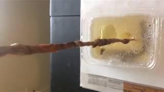 Microbe Formulas - Mimosa Pudica Seed Demonstration - PakVim