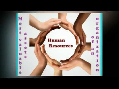 How to Boost Your Career With Human Resources Management?