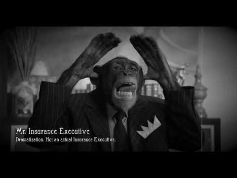 Insurance Monkeys | Shiner Law Group | 561-777-7700