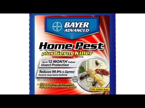 THIS STUFF IS AMAZING:  GET RID OF ROACHES FOREVER... Even in an apartment building #BayerAdvanced