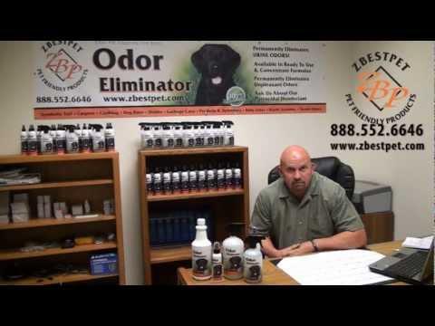 Cat & Dog Urine Removal Skunk Odor & Stain Remover