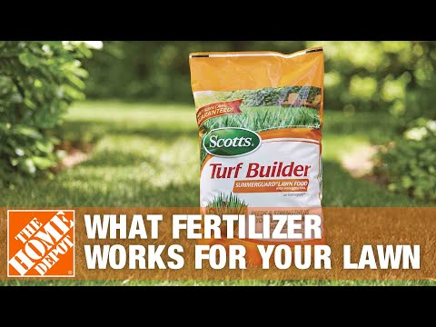 How To Decide What Fertilizer Works for Your Lawn - The Home Depot