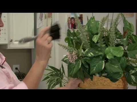 General Housekeeping : How to Clean Silk Plants