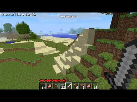 Minecraft Moshtage