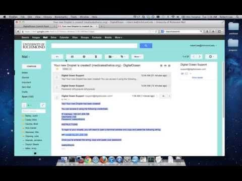 How to Build a Wordpress Website on Digital Ocean in a Minute!