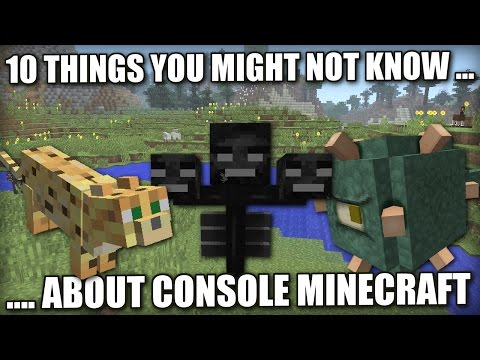 Download Minecraft - 9 THINGS YOU MAY NOT HAVE KNOWN ABOUT