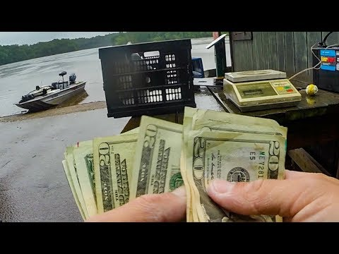 Winning Money In A Bass Fishing Tournament With a Random Subscriber! (WILD Catch)