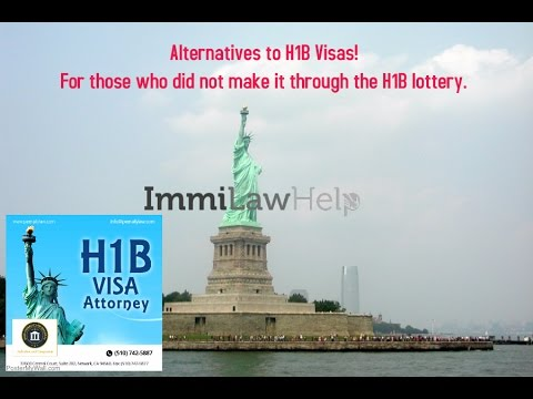 Options For those not selected H1B lottery|  H1B Alternatives