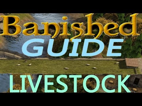 Banished Guide!: LIVESTOCK TRADING! HOW TO GET LIVESTOCK!