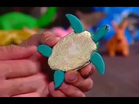 Creations in Clay   Sea Turtle