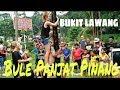 Download Ngakak! Bule Panjat Pinang 17 Agustus 2017 Di Bukit Lawang | Greasy Pole Climbing Contest In Mp4 3Gp Full HD Video