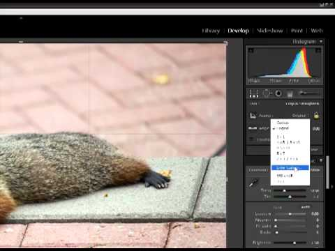 Crop a photo to a specific pixel size with LightRoom