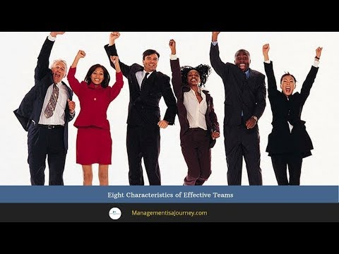 Eight Characteristics of Effective Teams