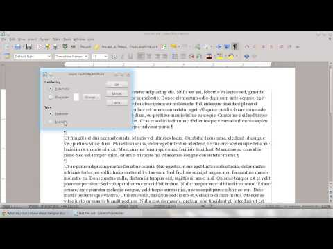 LibreOffice 4 How To: add footnotes and endnotes