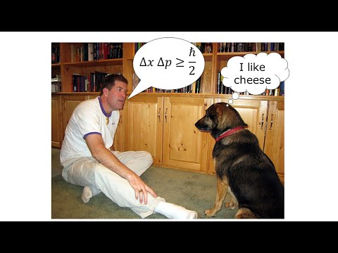 What Every Dog Should Know About Quantum Physics