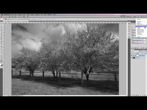 How To Change Color To Black And White In Photoshop