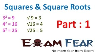 Maths Square and Square Roots part 1 (Introduction) CBSE Class 8 Mathematics VIII