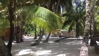 La Isla Saona. La Provincia De La Romana